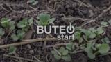 BUTEO start: Superior Flea Beetle Protection | Bayer Canada