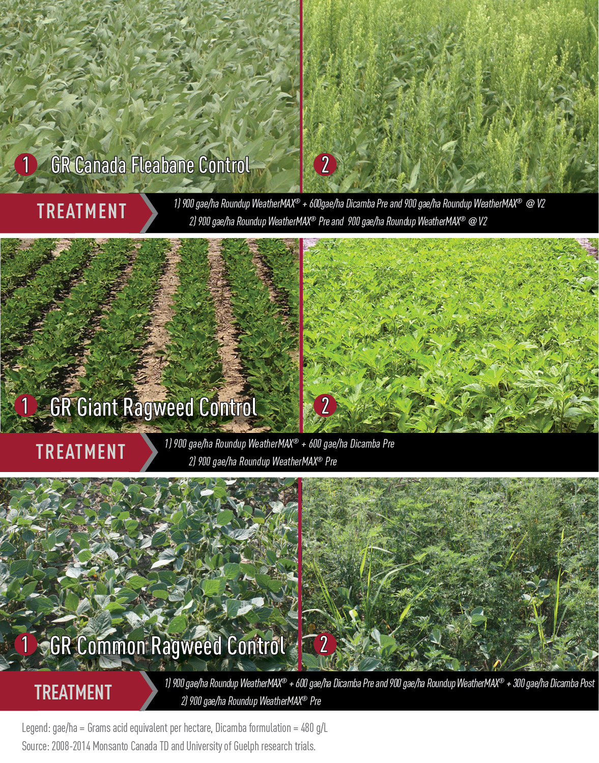 Field Trials Demonstrate Dicamba Efficacy